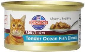 buy hill u0026 39 s science diet indoor cat entree minced cat