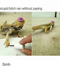 Stupid Bitch Meme - stupid bitch ran without paying smh bitch meme on esmemes com