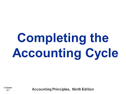 Roxanne Robinson   FI    Case Study   the Complete Accounting