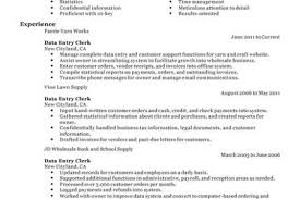 Data Entry Job Resume Samples by Medical Records File Clerk Resume Examples Templates Job Data