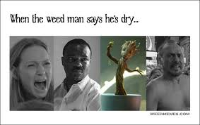 Dry Humor Memes - when weed man says he s dry out of weed memes