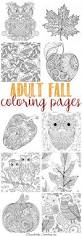 25 fall coloring sheets ideas
