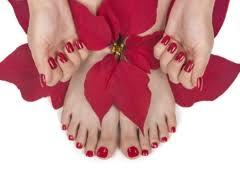 t nail livonia mi 48152 yp com