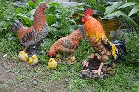 aliexpress buy home garden resin chicken figurine