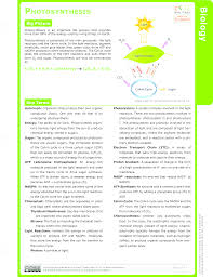 Photosynthesis Concept Map Calvin Cycle Study Aids Biology Ck 12 Foundation