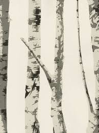 birch tree wrapping paper i found it the exact wallpaper as s office it will bring