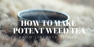 how to make potent weed tea from your leftover stems marijuana