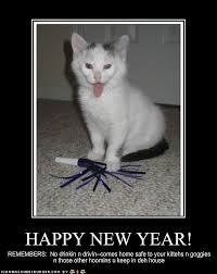 Happy New Year Funny Meme - animals say happy new year 10 pics animal s look