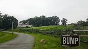 Blue Hill At Stone Barns Pocantico Hills Ny Blue Hill At Stone Barns Menu And Photos Business Insider