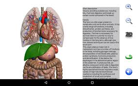 Interactive 3d Anatomy Visual Anatomy Free Android Apps On Google Play