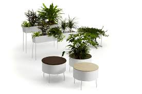 Oasis For Flowers - green oasis for better indoor life