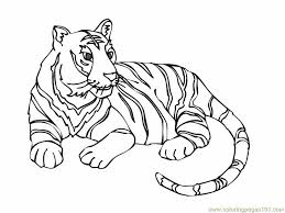 tiger 12 coloring free tiger coloring pages