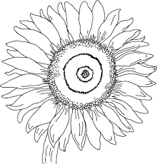 coloring pages pokemon girls sunflower adults