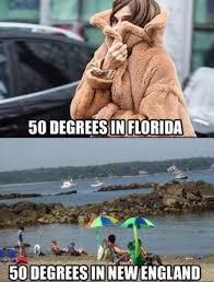 Florida Winter Meme - pin by costruzioni ing aldo pizzuto on miami pinterest miami