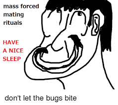 Dont Let The Bed Bugs Bite 25 Best Memes About Bed Bugs Bite Bed Bugs Bite Memes