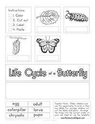 free life cycle of a butterfly cut u0026 paste worksheet ultimate