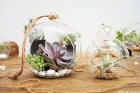 4 inch hanging terrarium orb tealight holders vase market