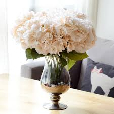100 hydrangea home decor best 25 hydrangea bush ideas only on
