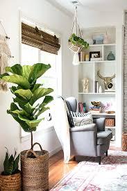 Home Decorators Home Decor Plants Living Room Home Decorators Rugs Blue Thomasnucci