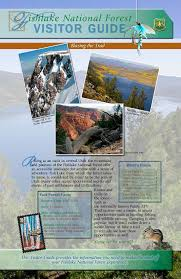 The Forest Map Fishlake National Forest Maps U0026 Publications