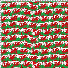 Why Does The Welsh Flag Have A Dragon Rub402 Welsh Dragon Friedmans