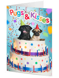 u0026 kisses two pug dogs in a giant cake birthday card