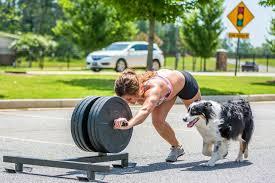 j bar w australian shepherd crossfit forging elite fitness thursday 150820