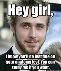 I Know You Want Me Meme - hey girl i know you ll do just fine on your anatomy test you can