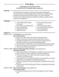 Handyman Resume Template Handyman Resume Samples Handyman Handyman Job Description For