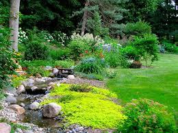 Landscape Inspiration Best 25 Backyard Stream Ideas On Pinterest Garden Stream Pond