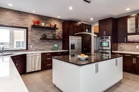 sleek contemporary kitchen renovation