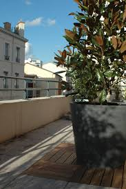 bureau magny en vexin bureau magny en vexin 20 images planter un magnolia en pot 28