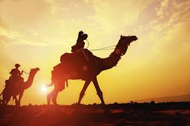 there were no camels during time of biblical patriarchs study