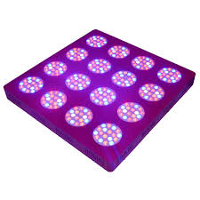 led grow light usa shipping from usa full spectrum znet16 800w led grow lights for