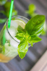 bacardi mojito recipe how to prepare basito the cocktail with basil and rum made in