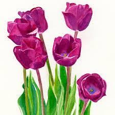 violet purple old clipart free download clip art free clip art on clipart