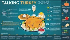 talking turkey thanksgiving facts figures food infographics