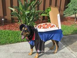 Halloween Costumes Dachshunds 10 Homemade Costumes Dogs Ammo Dachshund