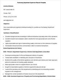 Executive Summary Resume Examples by Resume Examples For Executive Summary With Management