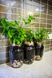 Mason Jar Wall Planter by Best 25 Herb Garden Planter Ideas On Pinterest Herb Planters