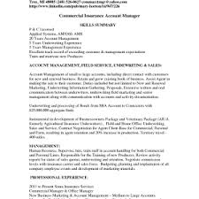 Sample Actuary Resume by Insurance Underwriter Resume Summary Resume Account Management