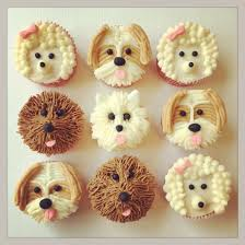 dog cupcakes baking change in the lives of canadian animals