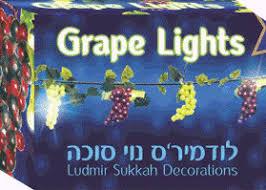 sukkah decorations israel book shop grape lights electric sukkah decoration 9