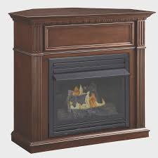 fireplace new ventless fireplace inserts home design image