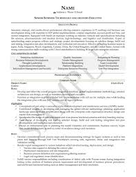 Executive Resume Examples Project Manager Resume Sample U2013 Mystar Resumes