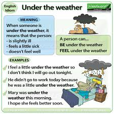the weather idiom