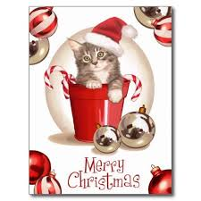 40 best cards illustrations cat christmas images on pinterest