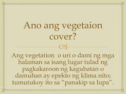 vegetaion images Mga vegetation cover sa asya jpg