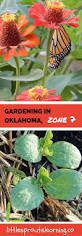 family gardening 7686 best gardening u0026 outdoors images on pinterest organic