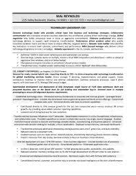 Executive Summary Resume Samples by Download Cio Resume Haadyaooverbayresort Com